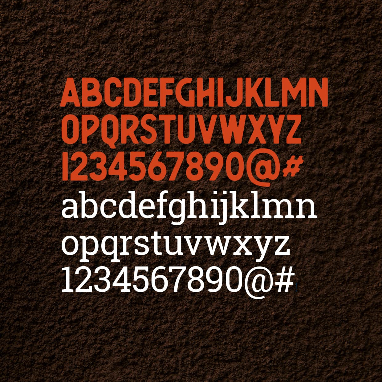 The Cacao Coalition Campagne huisstijl typografie